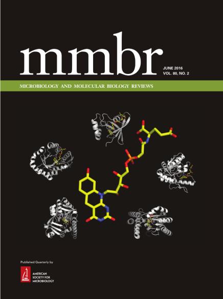 MMBR cover