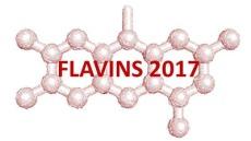 flavins-banner
